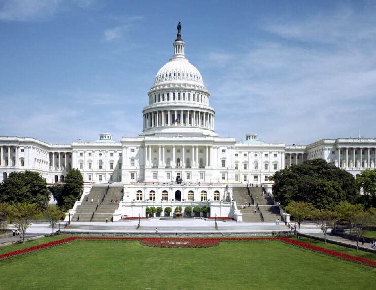 Ferrets Legalized in Washington, D.C.