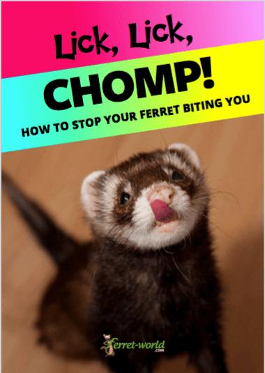 licklickchomp