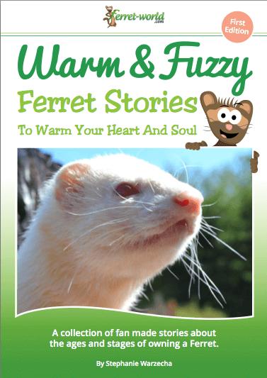 warmandfuzzyebook