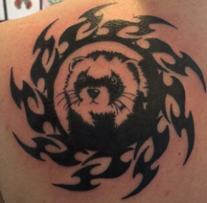 Ferret Tattoo 6