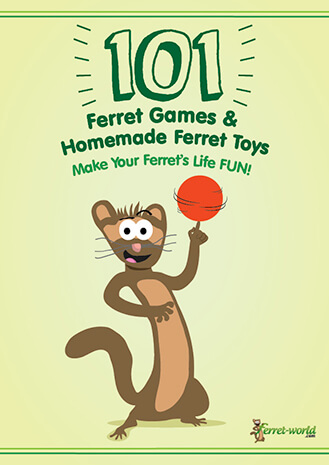 ferret world ebook