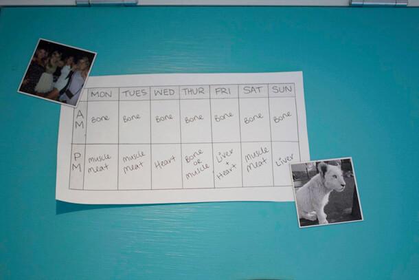 Evie's food schedule