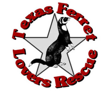 Featured Ferret Shelter: Texas Ferret Lovers Rescue