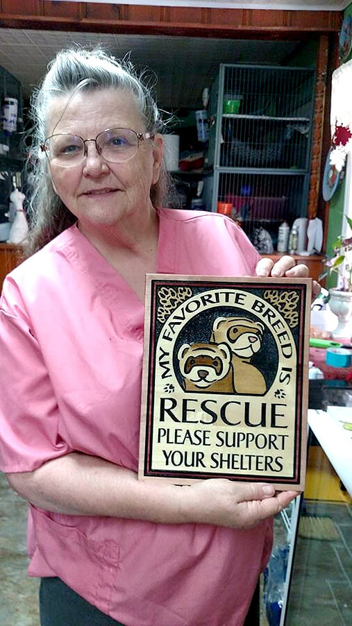 How many ferrets have you helped over the years?