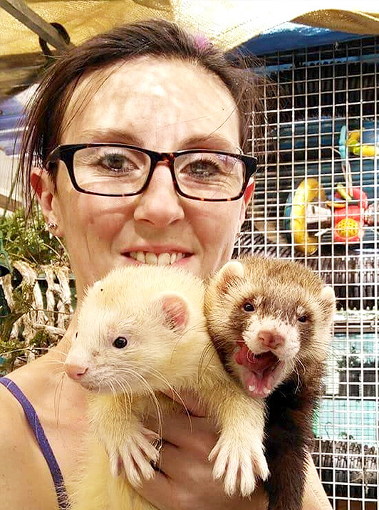 We have even had ill ferrets surrendered as their owners cannot afford to vet work them
