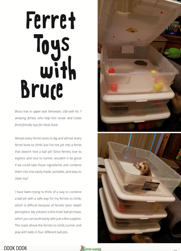 Ferret Toys With Bruce! How to make a 4-tier ball pit maze