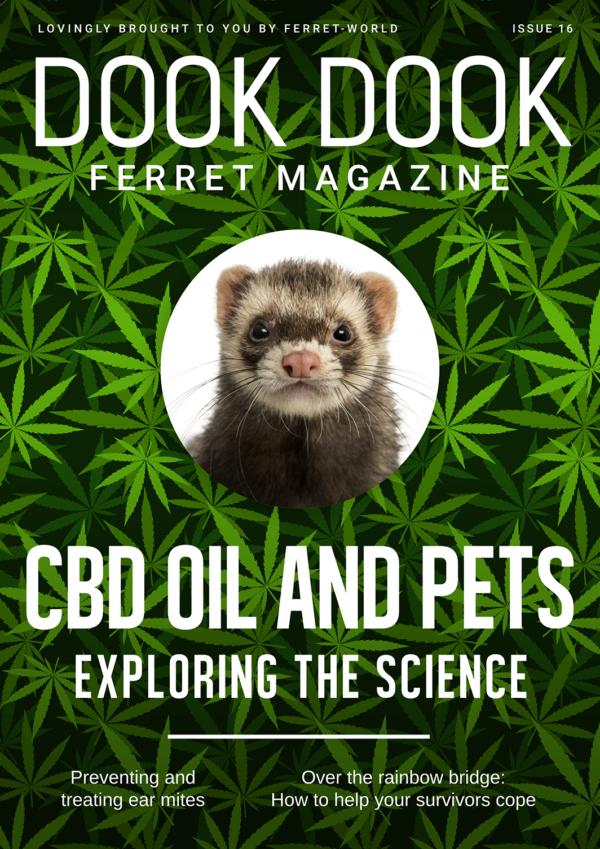 Dook Dook Ferret Magazine 16