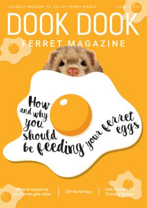 Dook Dook Ferret Magazine 17-18