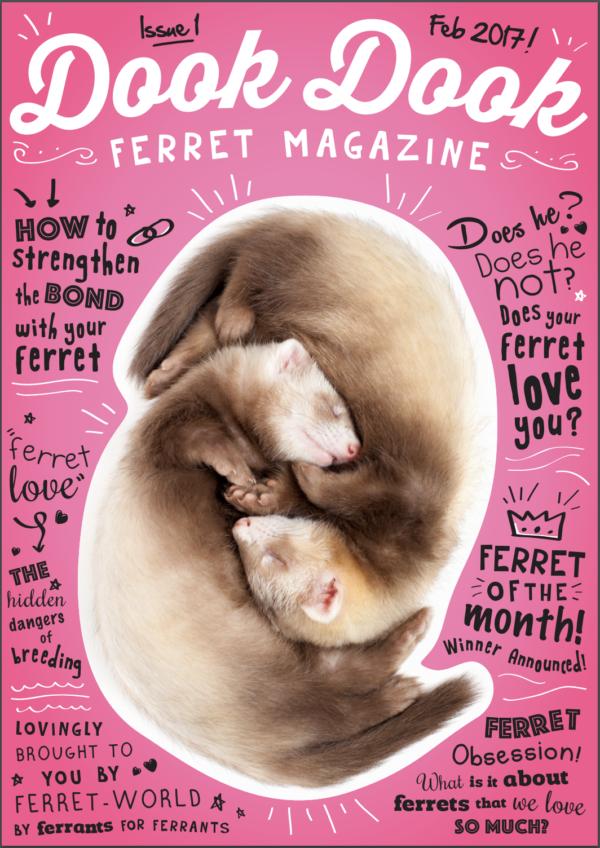 Dook Dook Ferret Magazine - Ferret Love Edition