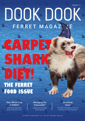 Dook Dook Ferret Magazine Issue 11