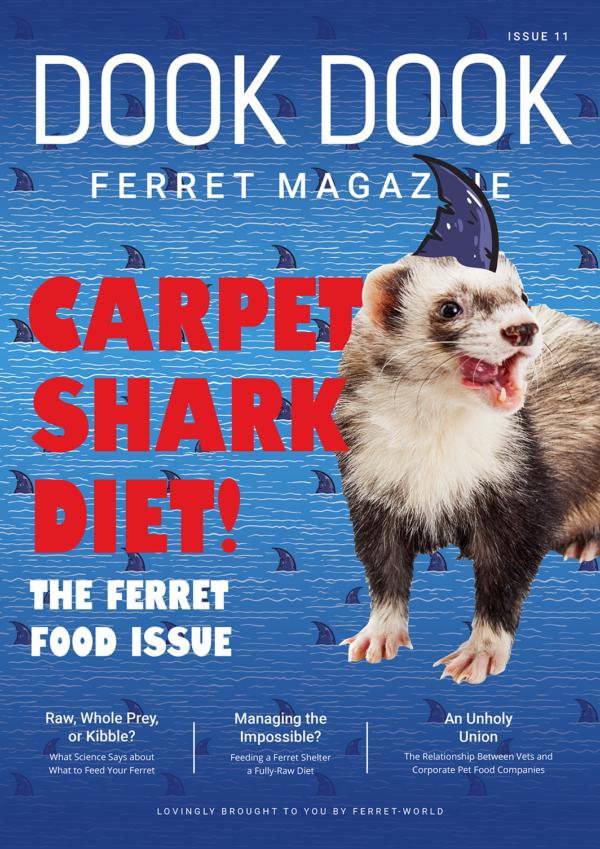 Dook Dook Ferret Magazine Issue 11