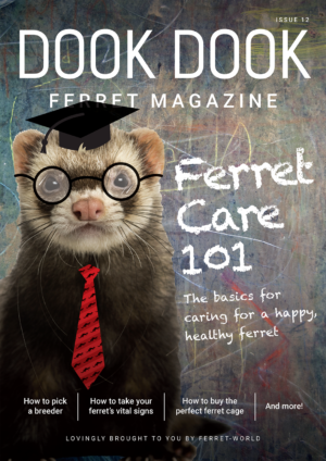 Dook Dook Ferret Magazine Issue 12