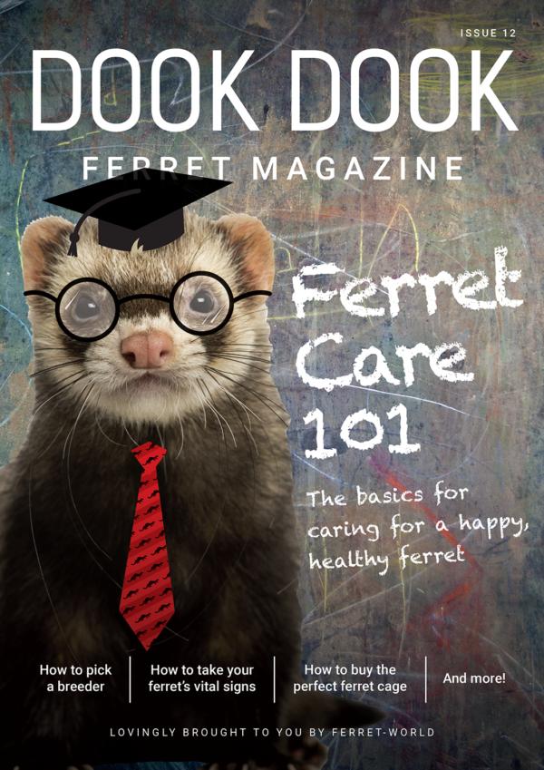 Dook Dook Ferret Magazine Issue 12