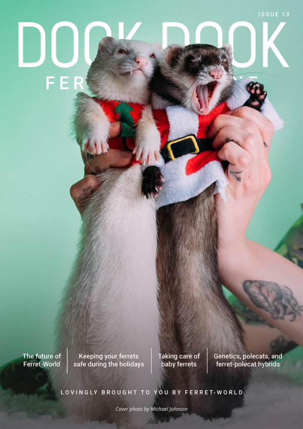Dook Dook Ferret Magazine Issue 13