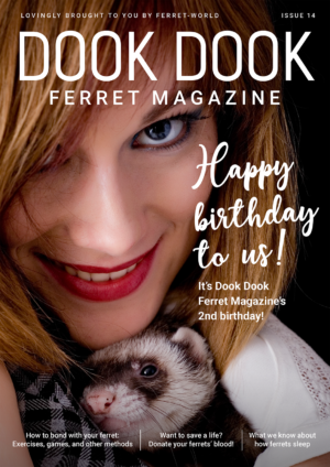 Dook Dook Ferret Magazine Issue 14 - 2 Year Anniversary Issue
