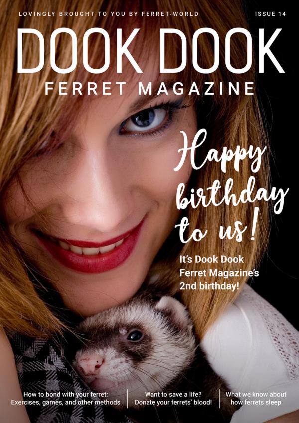 Dook Dook Ferret Magazine Issue 14 - 2 Year Anniversary Issue