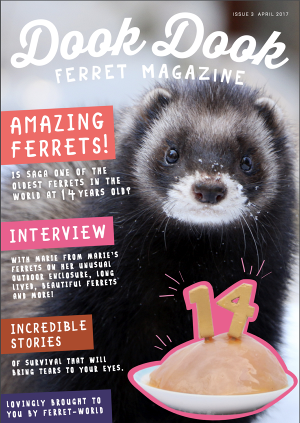Dook Dook Ferret Magazine Issue 3 - Amazing Ferrets Edition
