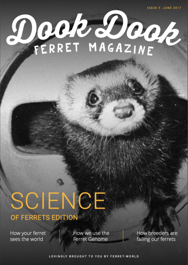 Dook Dook Ferret Magazine Issue 5 - Science Of Ferrets Edition