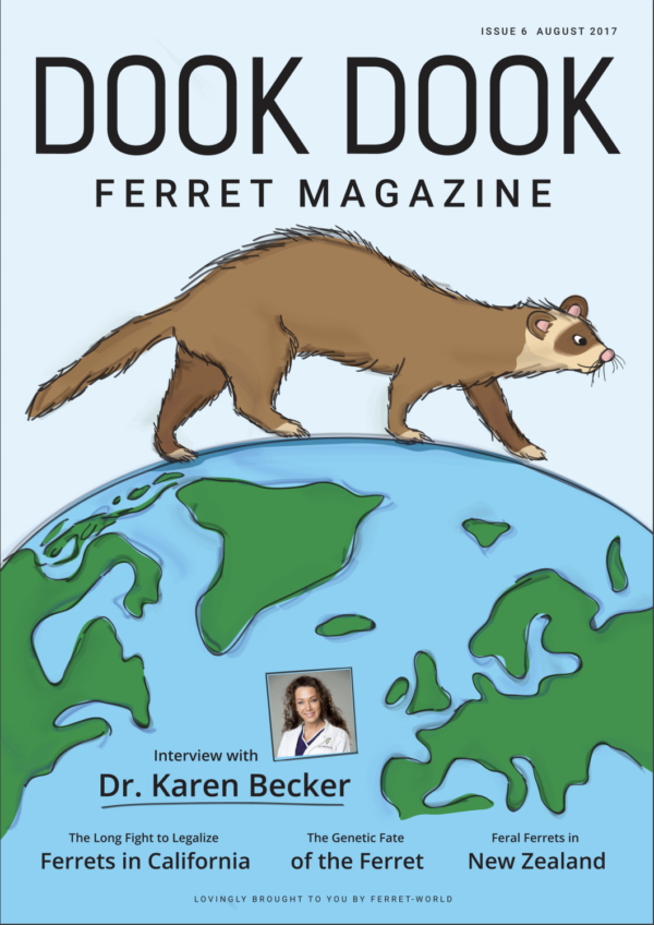Dook Dook Ferret Magazine Issue 6 - Ferrets Around The World Edition