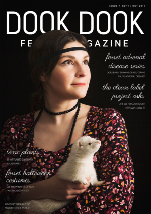 Dook Dook Ferret Magazine Issue 7