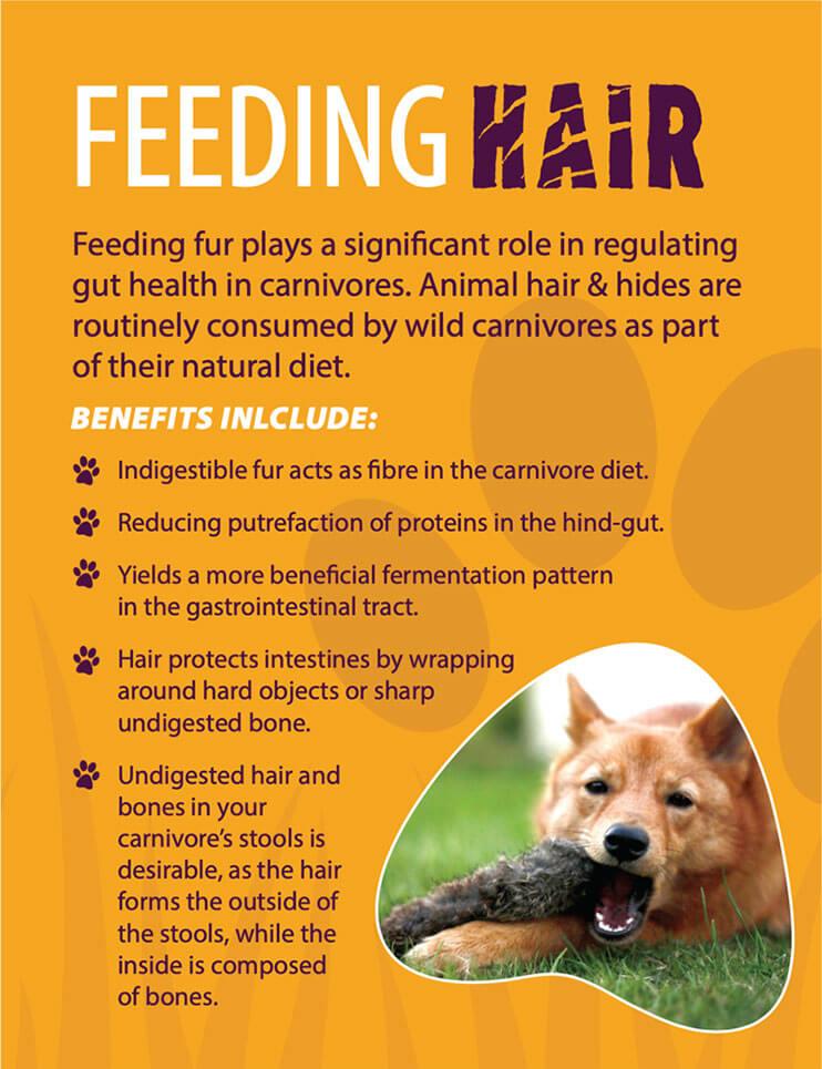 Feeding hair